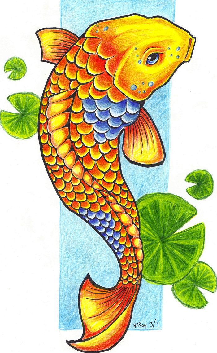 Fish Clip Art Images   Koi Fish By Flickter88 On Deviantart Koi Fish