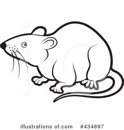 Rats Get Fat - ...It's A Trap!