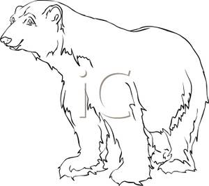 Clipart Picture  Black And White Polar Bear