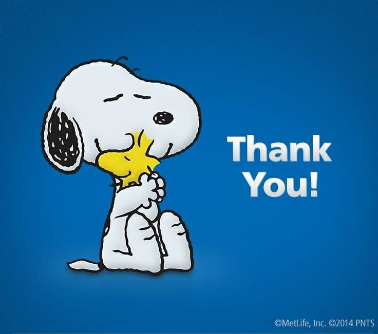 Snoopy   Woodstock Thank You   Snoopy   Pinterest