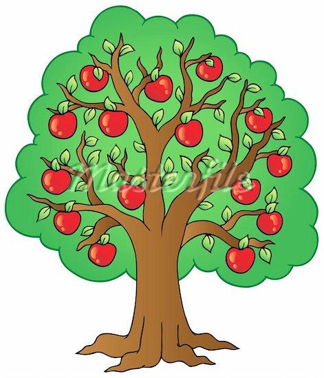 free fruit tree clipart - photo #10