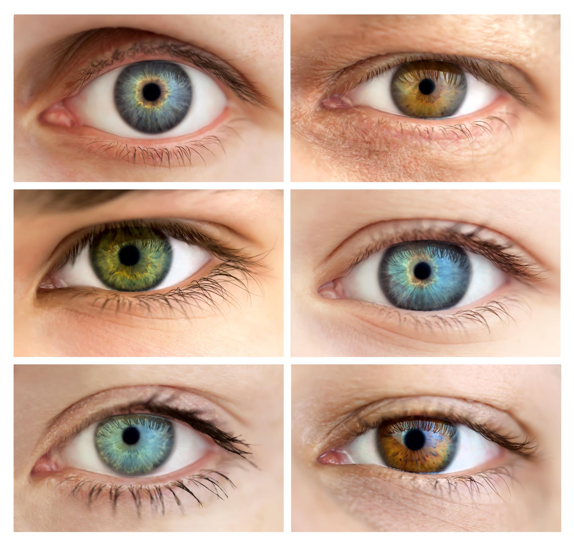 виды термобелья один глаз светлее другого по цвету что значит мужское термобелье NOVA