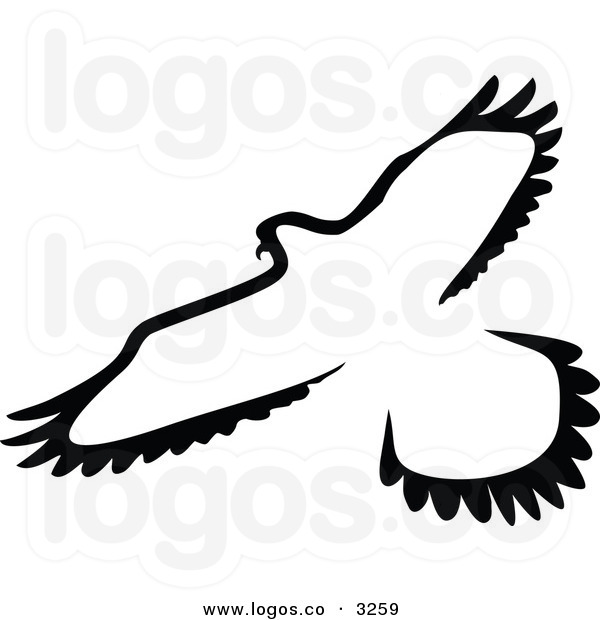 Hawk Clipart Black And White Royalty Free Vector Of A Black And White