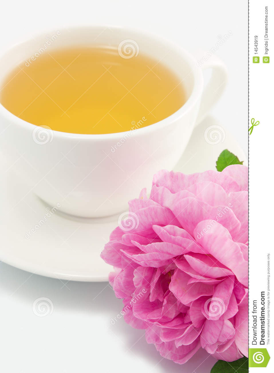 More Similar Stock Images Of   Herbal Tea And Pink Rose