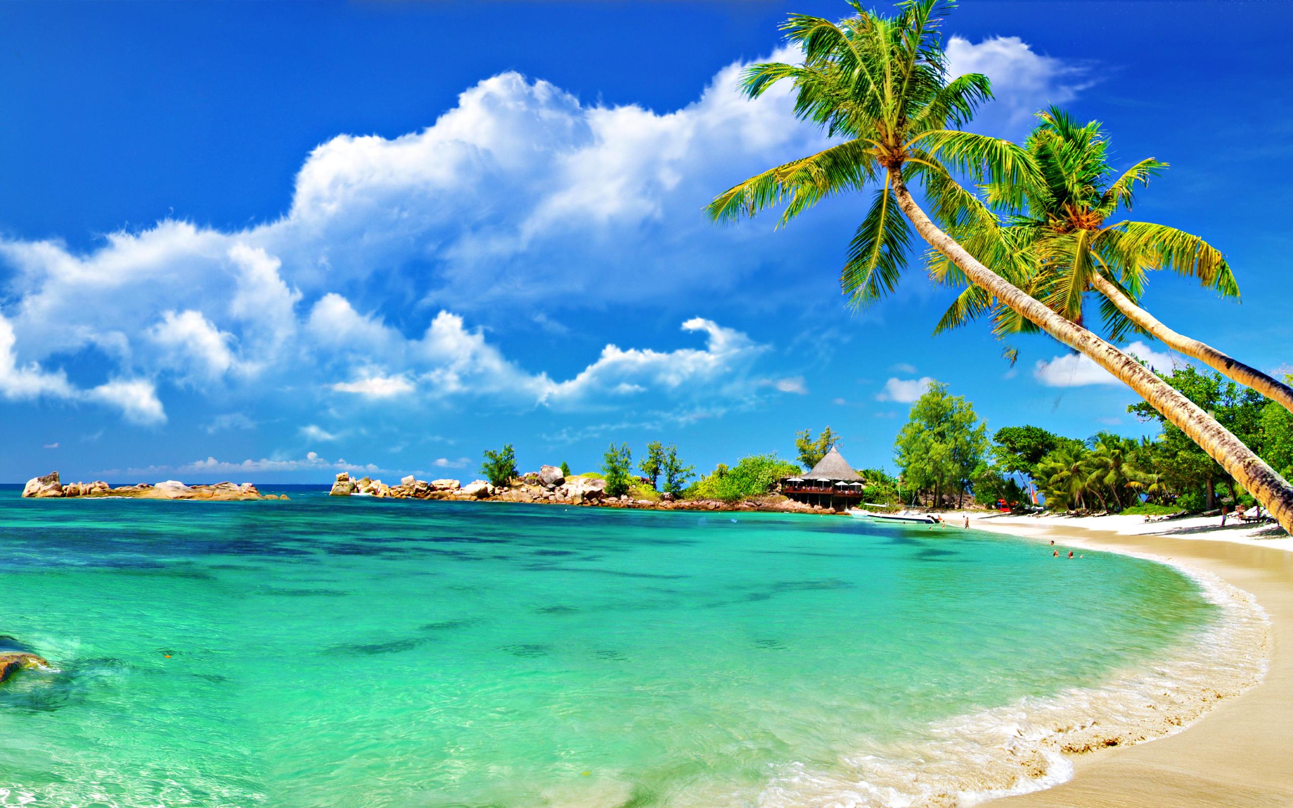 Tropical Beach Clipart - Clipart Kid
