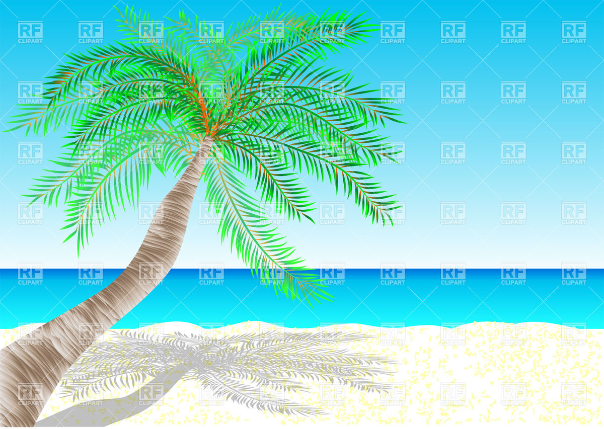 Tropical Beach   Palm Tree And Sea 28032 Travel Download Royalty