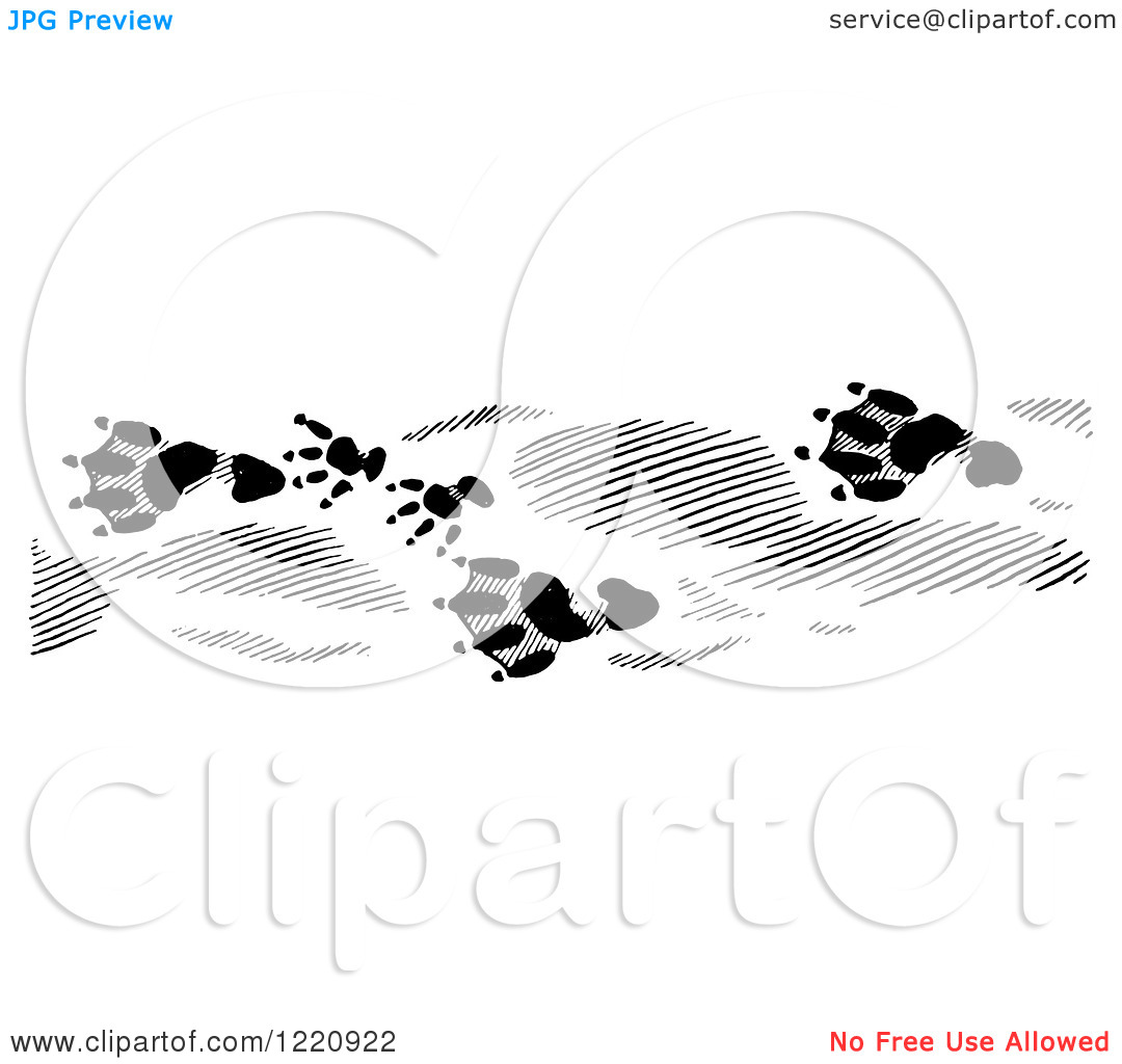 Clipart Of Black And White Beaver Tracks   Royalty Free Vector