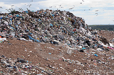 Garbage Dump Royalty Free Stock Photography   Image  9377727