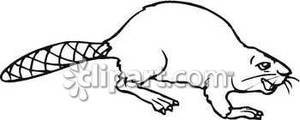 Happy Black And White Beaver   Royalty Free Clipart Picture