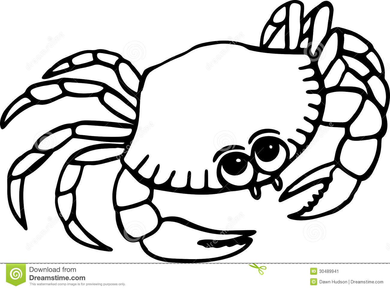 Simple Line Drawing Clip Art : Hermit crab clipart black and white beach simple