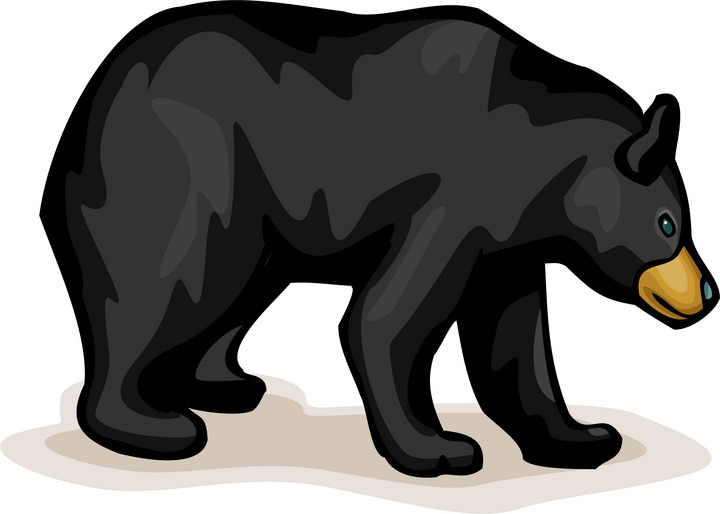 Clip Art Black Bear Clip Art black bear clipart kid free clipart