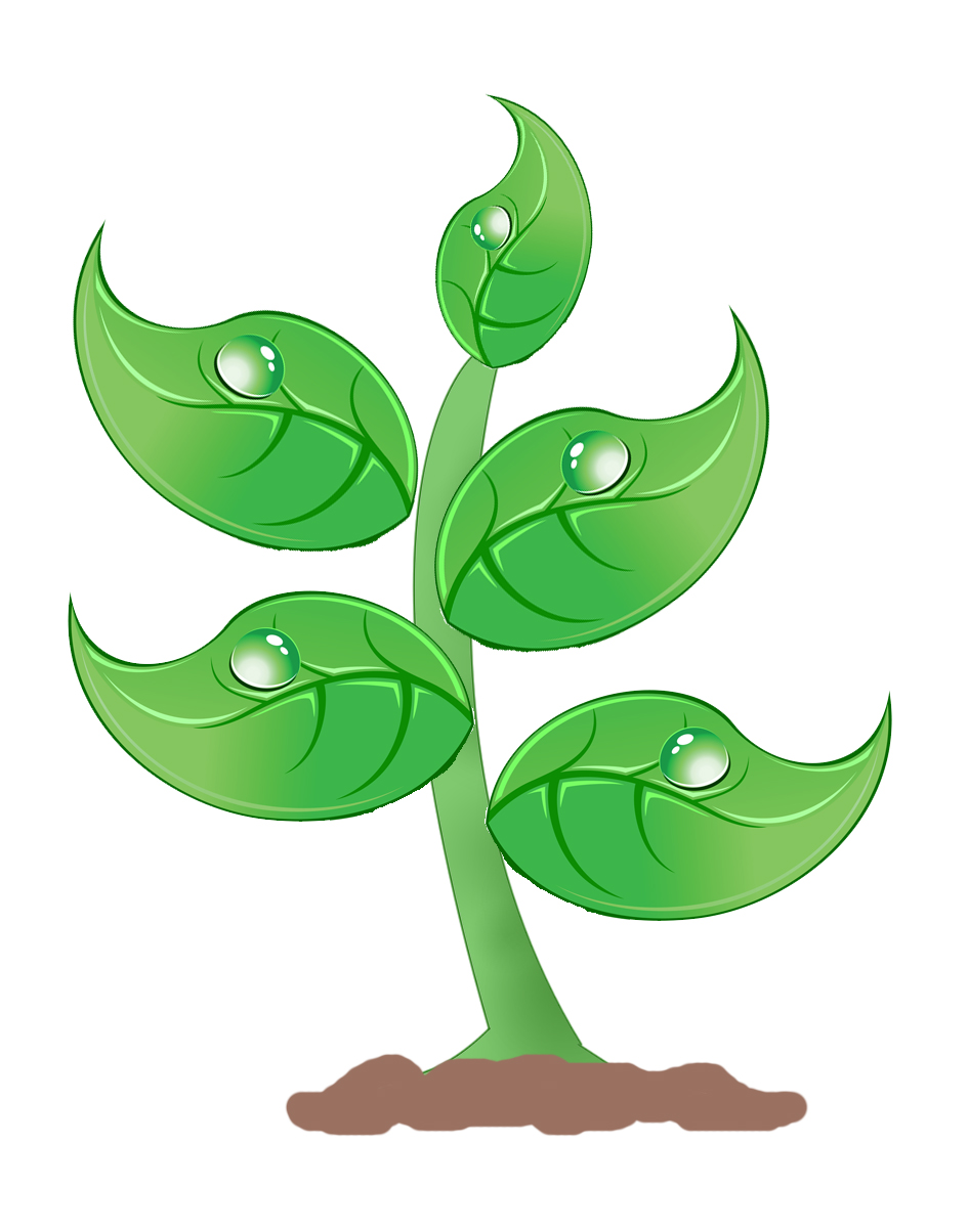 Free Plant Clipart