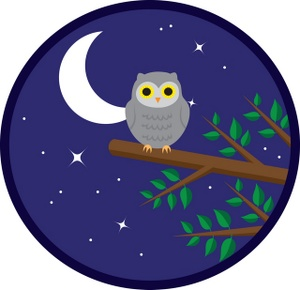 Illustration Of An Owl Sitting On A Tree Branch At Night Clipart