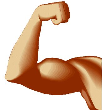 Clip Art Muscle Clip Art body muscles clipart kid international radio tape and literature ministry muscle power
