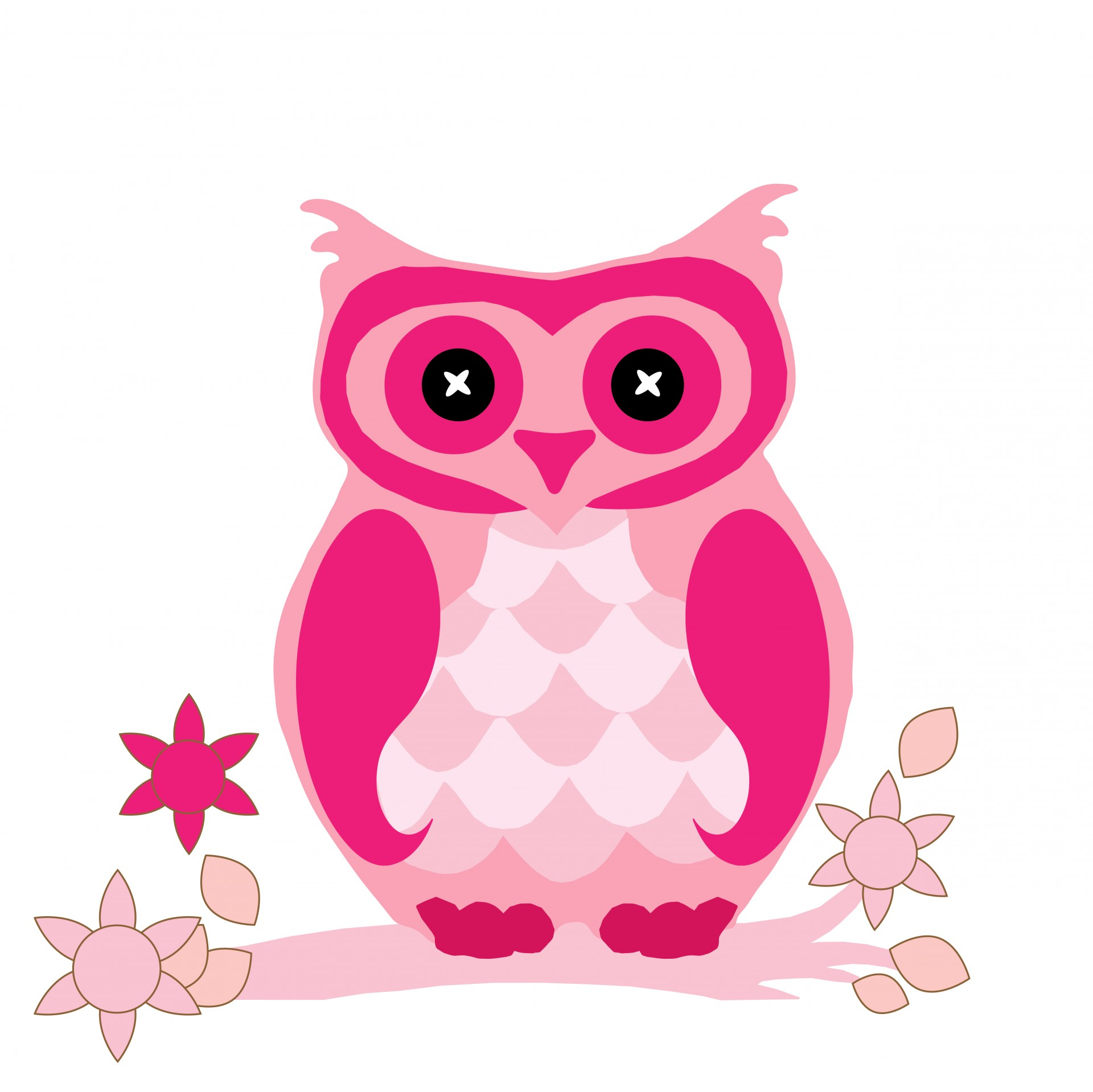 Owl Clipart Cute Pink Free Stock Photo Hd   Public Domain Pictures