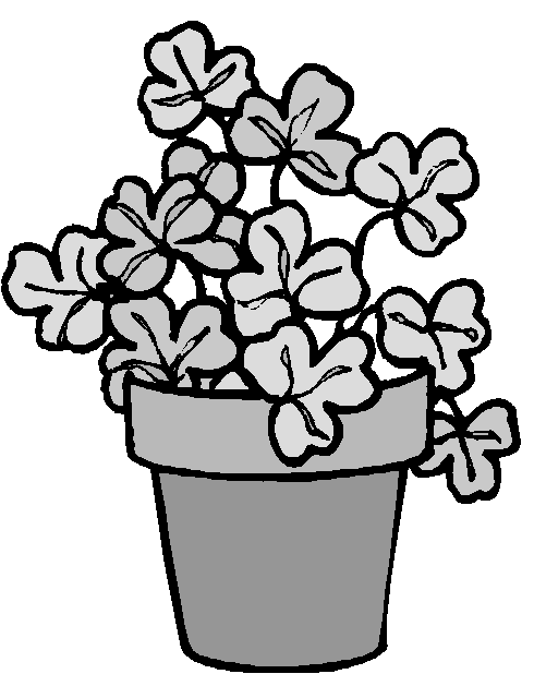 Shamrock Plant   Http   Www Wpclipart Com Holiday Saint Patricks Day