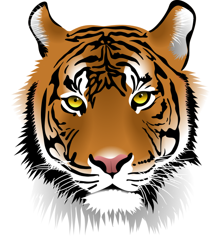 Tiger Clip Art   Images   Free For Commercial Use