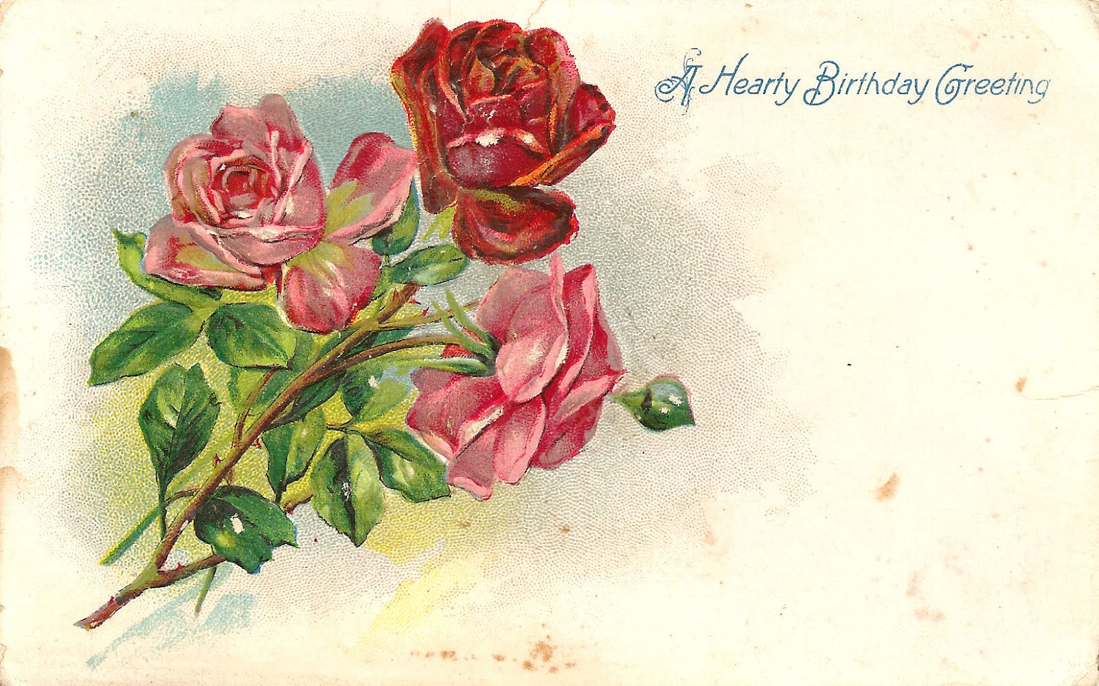 Free Flower Clip Art  3 Red And Pink Rose Graphics On Vintage Birthday