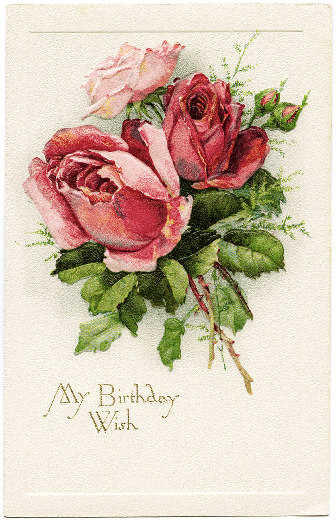 Free Vintage Image My Birthday Wish Roses Postcard   Old Design Shop