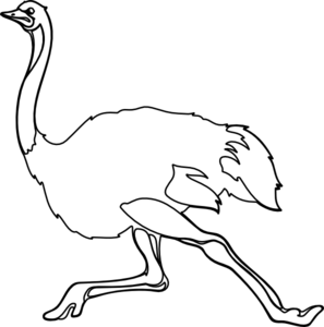 Ostrich Clipart Black And White   Clipart Panda   Free Clipart Images