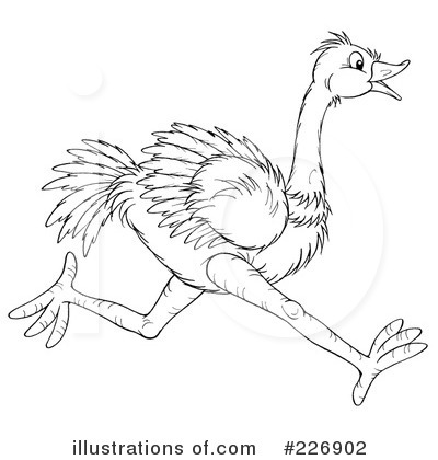 Ostrich Clipart Black And White Royalty Free  Rf  Ostrich