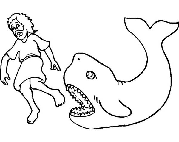 Jonah And The Whale Outline Clipart - Clipart Suggest