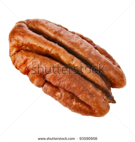 Pecan Clip Art Peeled Pecan Nuts Close Up