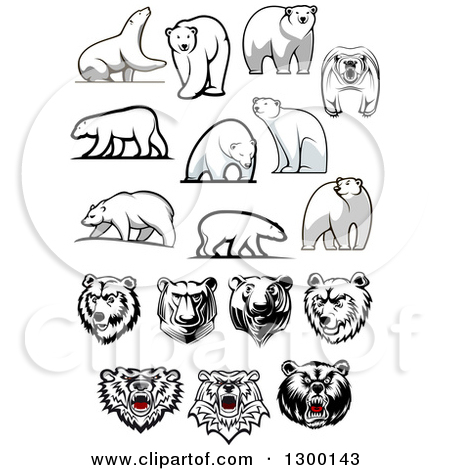 Polar Bear Designs