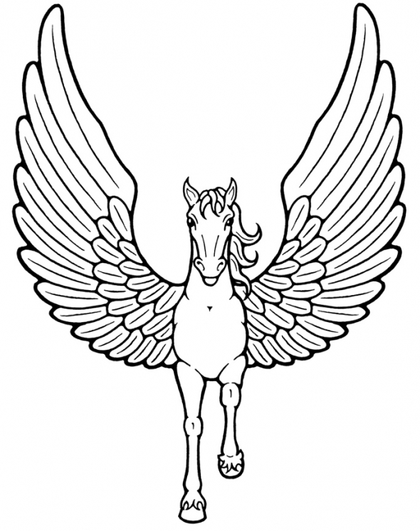 Unicorn Pictures To Color   Clipart Best