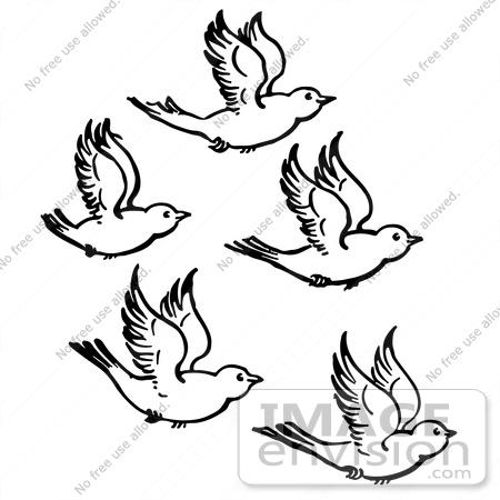 Flying Bird Black And White