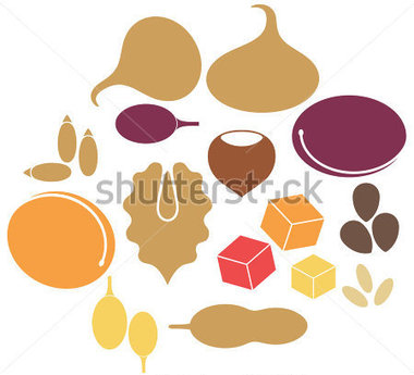 Download Source File Browse   Food   Drinks   Dried Fruit
