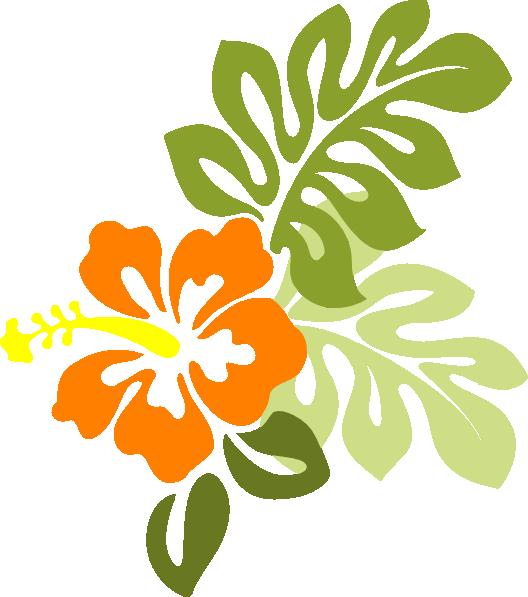 free vector graphic hibiscus - photo #18