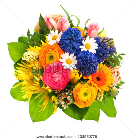 Spring flowers bouquet clipart