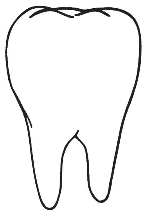 Tooth Outline Clipart - Clipart Kid