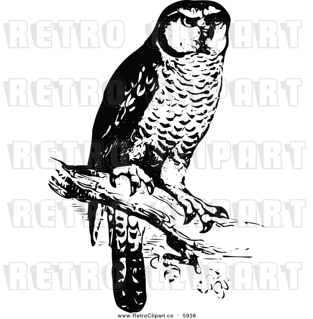 Clipart Of A Retro Black And White Perched Owl By Prawny Vintage