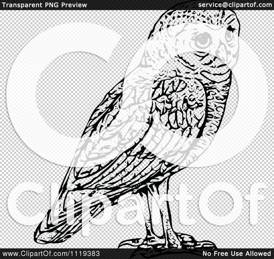 Clipart Of A Retro Vintage Black And White Owl   Royalty Free Vector