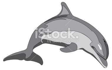 Bottlenose Dolphin Clipart Stock Illustration 2191507 Bottlenose