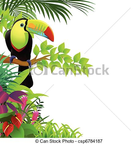 Of Toucan Bird In The Tropical Forest Csp6784187   Search Clipart