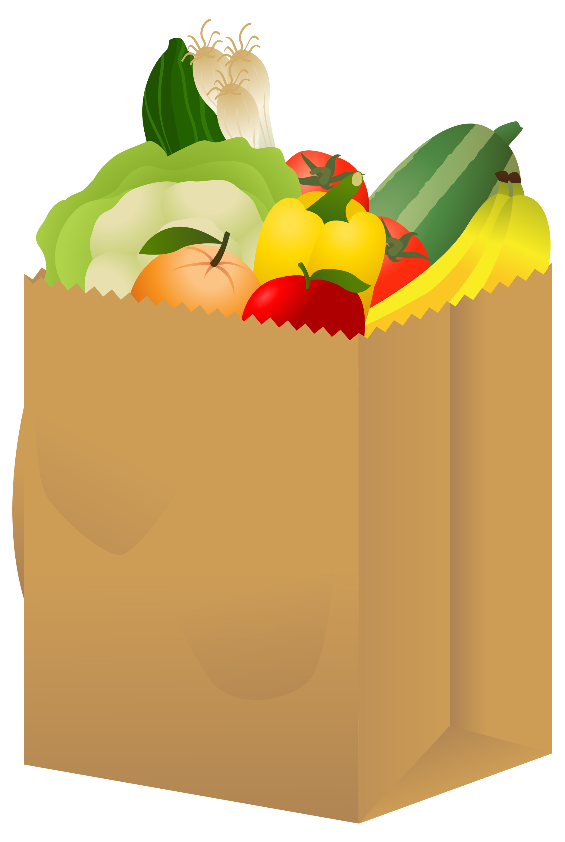 Clip Art Grocery Bag Clipart grocery bag clipart kid view jpg free nutrition and healthy food clipart