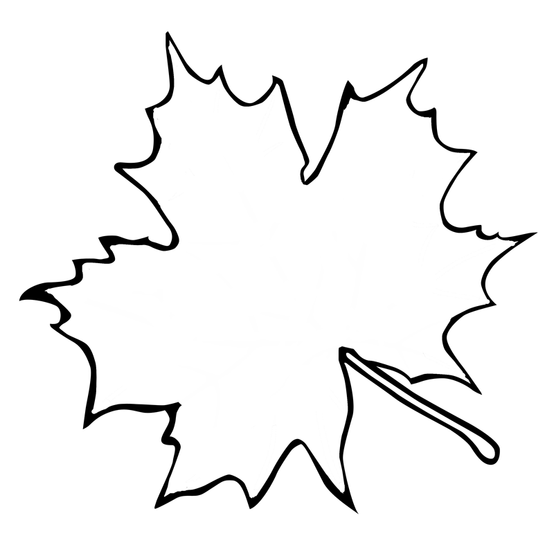 Maple Leaf Outline Clipart - Clipart Kid