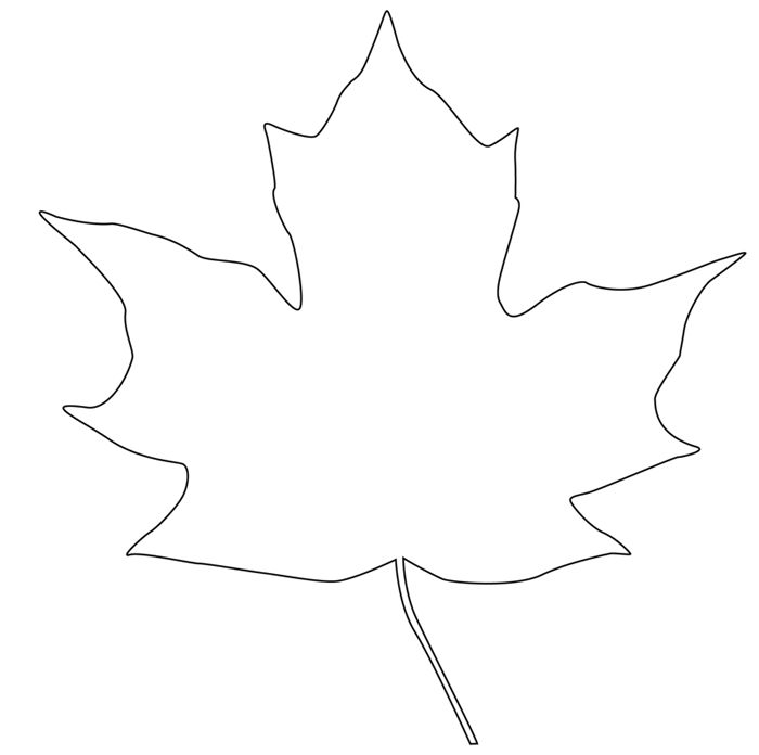 maple leaf outline clipart clipart suggest