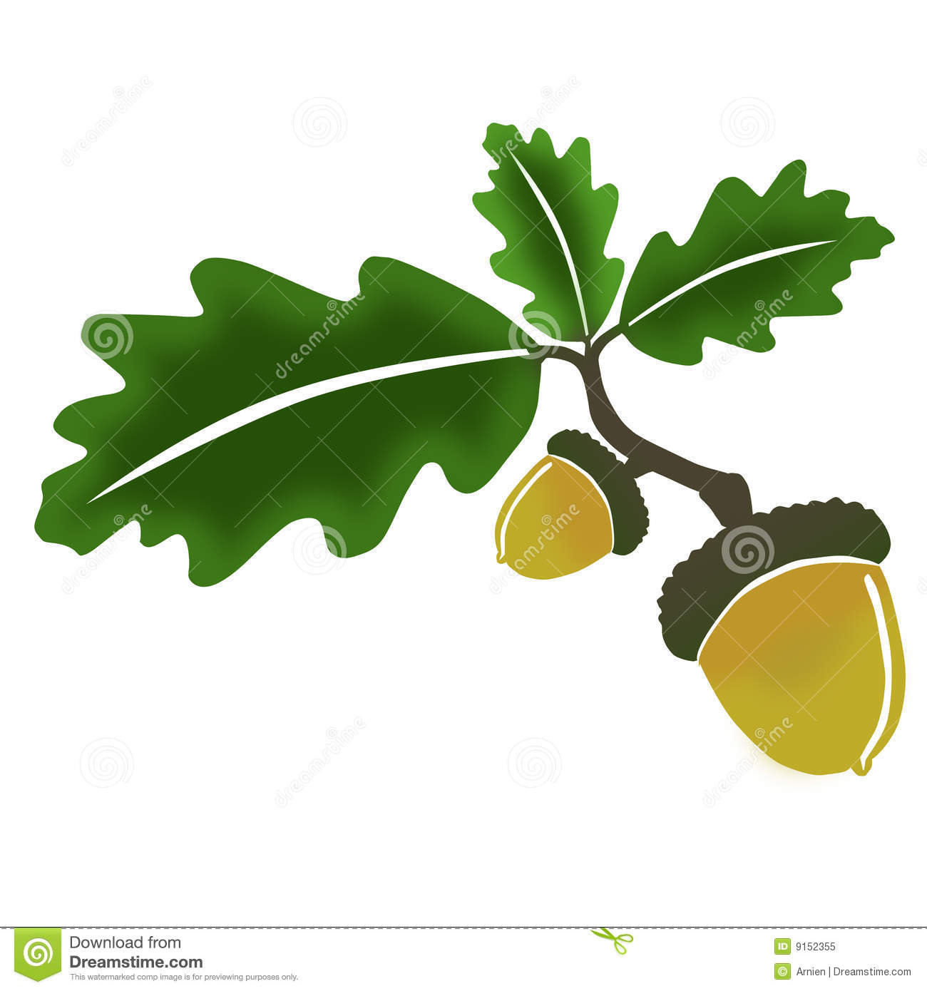 oak-leaves-clip-art-oak-leaves-acorn-9152355-jpg-38xxI6-clipart.jpg