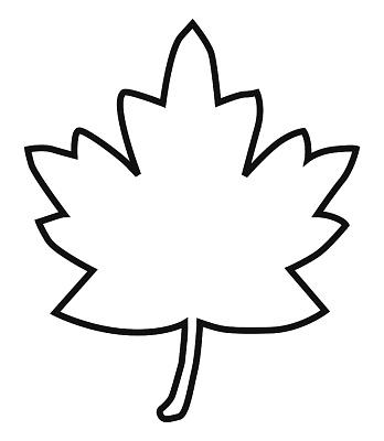 Clip Art Leaf Outline Clip Art maple leaf outline clipart kid of panda free images