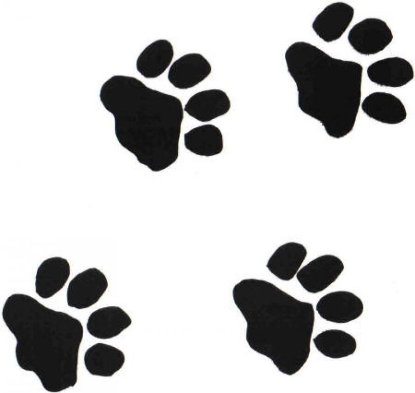 There Is 39 Panther Paw Free Cliparts All Used For Free