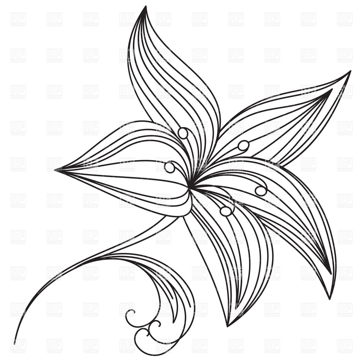Flower Of Lily Outline 16294 Download Royalty Free Vector Clipart