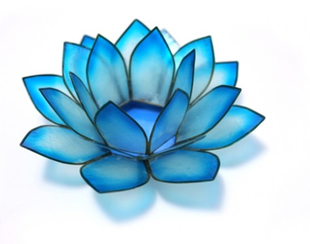turquoise flower clipart clipart suggest