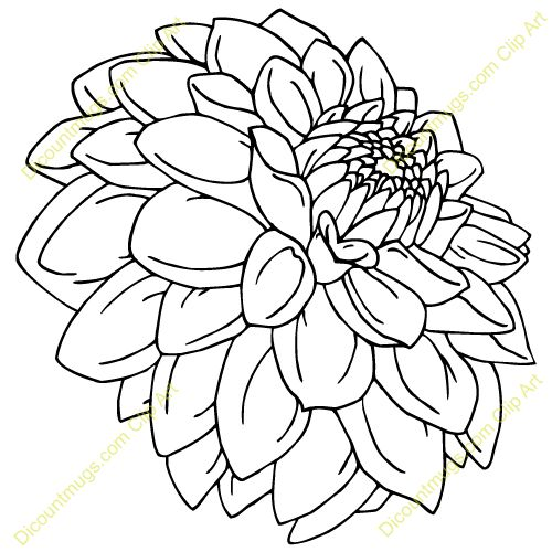 Outline Flowers Drawings Dahlias Art Drawings Dahlias Flowers Clip Art