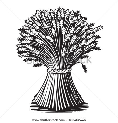 Sheaf Of Wheat Clipart   Cliparthut   Free Clipart