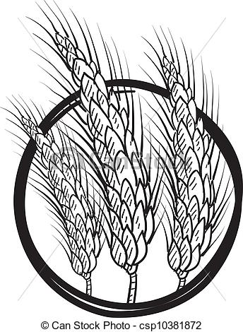 Sheaf Of Wheat    Csp10381872   Search Clipart Illustration Drawings