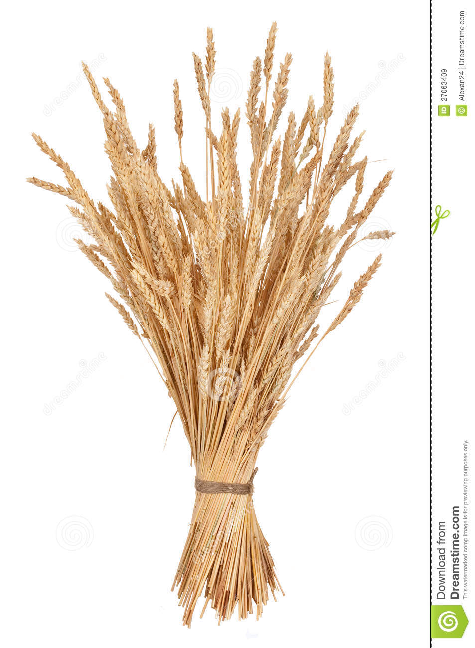 Wheat Bundle Clip Art Sheaf Of Wheat On White